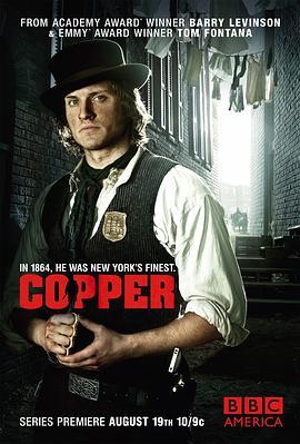 纽约警察故事 第一季