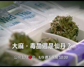 大麻:毒品还是仙丹